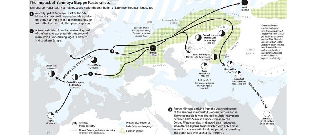 Yamnaya ancestry migrations