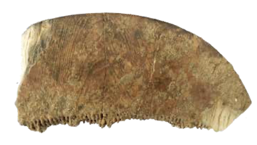 Ivory comb from Vaigai Valley Civilisation